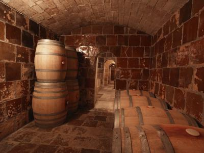 Barrels in the wine cellar at Finca Viladellops